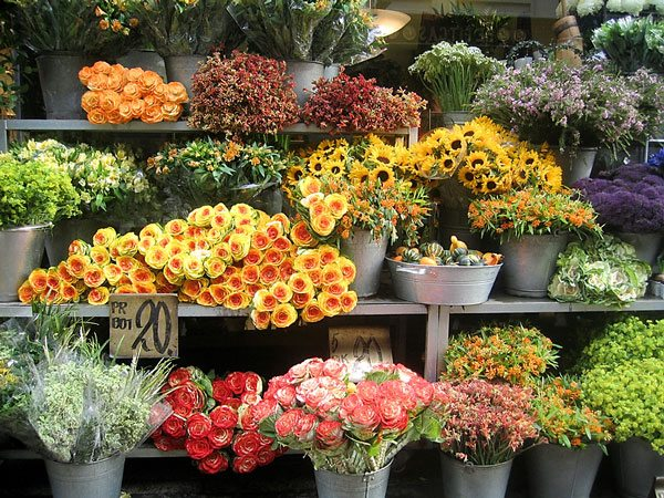 Shop-for-flowers